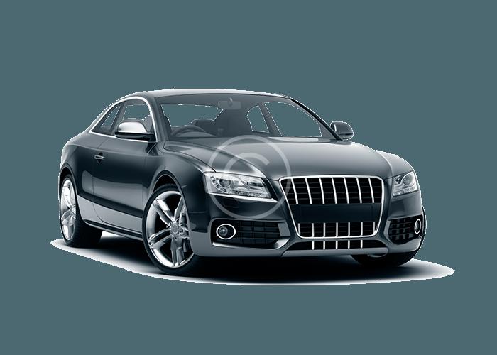 Audi M1351